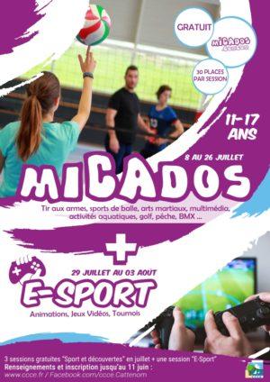 affiche-micados-ete-2019-ccce